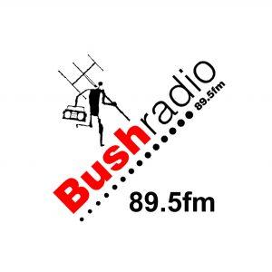 Bush radio icon
